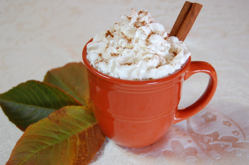 Pumpkin Pie Hot Chocolate