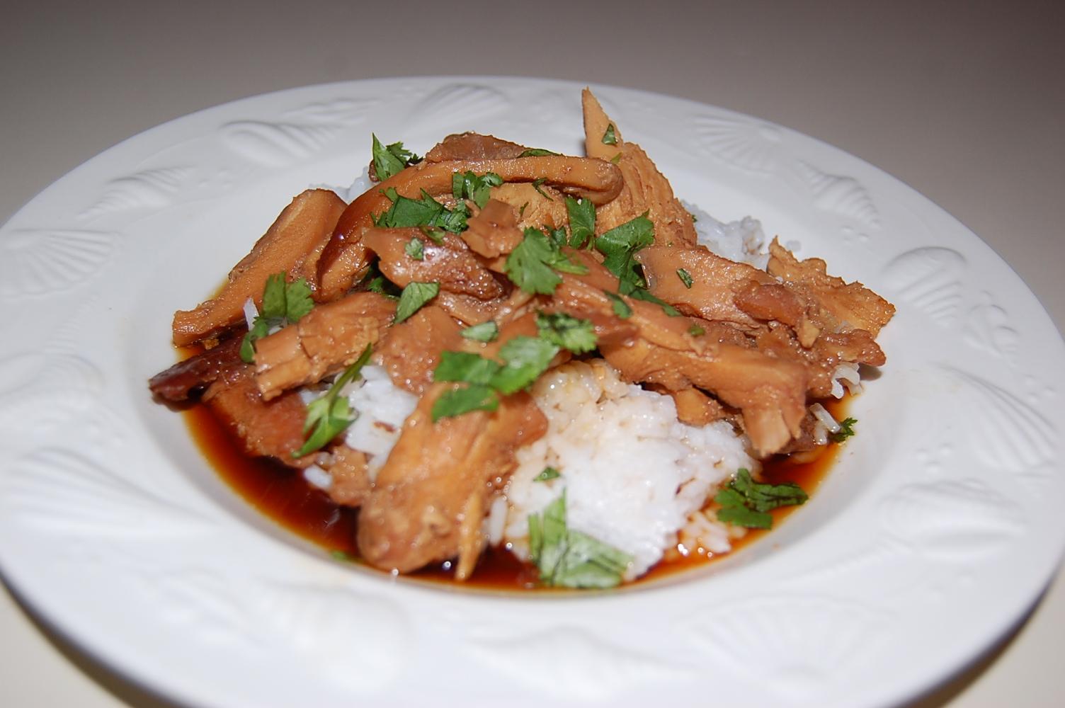 crock pot teriyaki chicken  cooking mamas