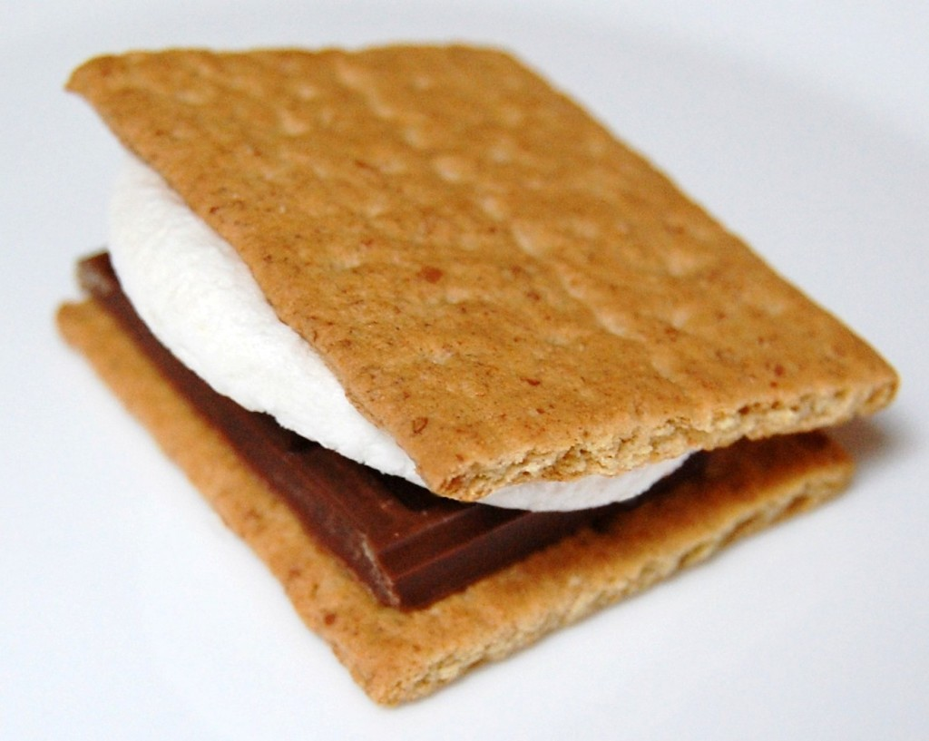 Indoor Outdoor Smores