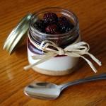 Blackberry No-Bake Cheesecake